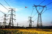 助推中国未来电网建设