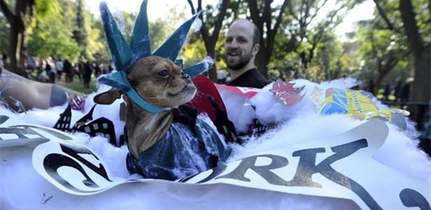 纽约举行狗狗着装万圣节