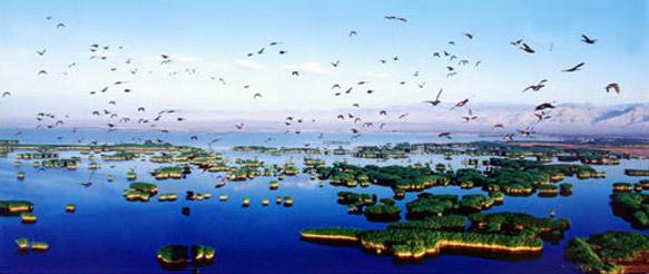 """""""沙湖""""这颗璀璨的塞上明珠还以其独特秀美的自然风光跻身国内旅游景区"""