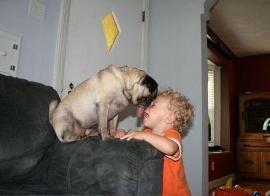 小孩和动物萌照头像