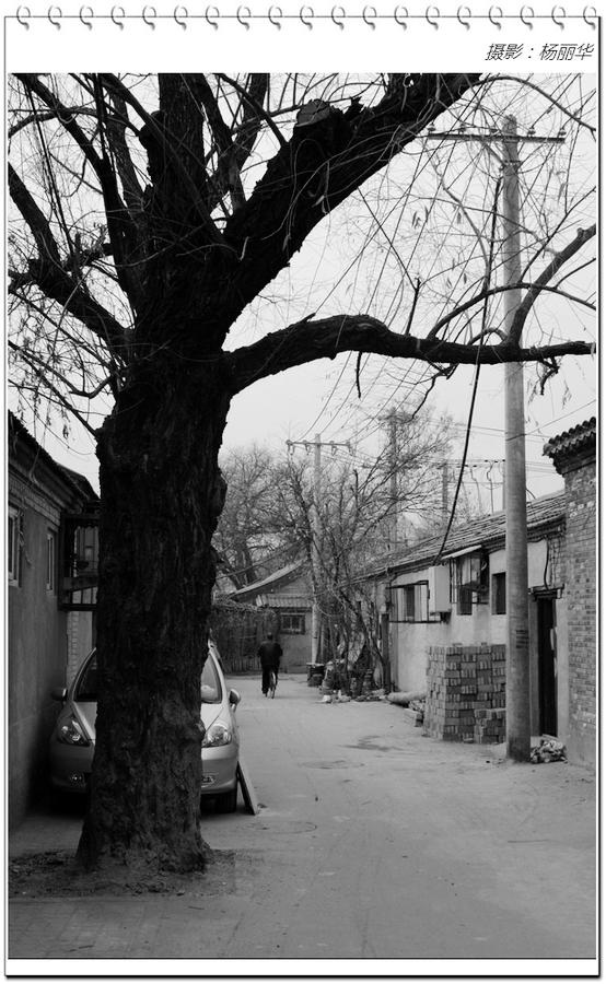 北京胡同的黑白印象