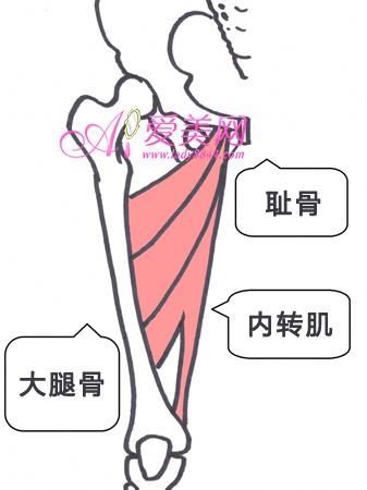 做减肥操瘦大腿内侧赘肉