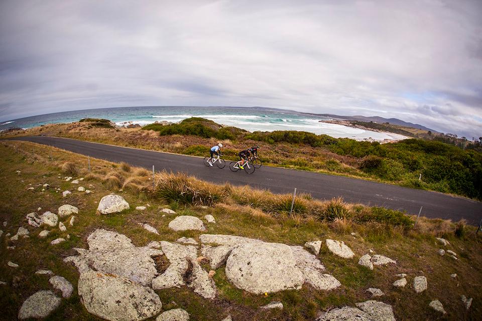 骑行澳大利亚(下)穿越古老森林