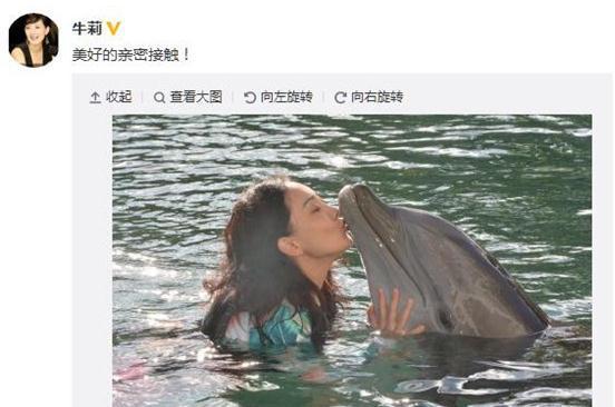 [明星爆料]好有爱!牛莉水中亲吻海豚(图)