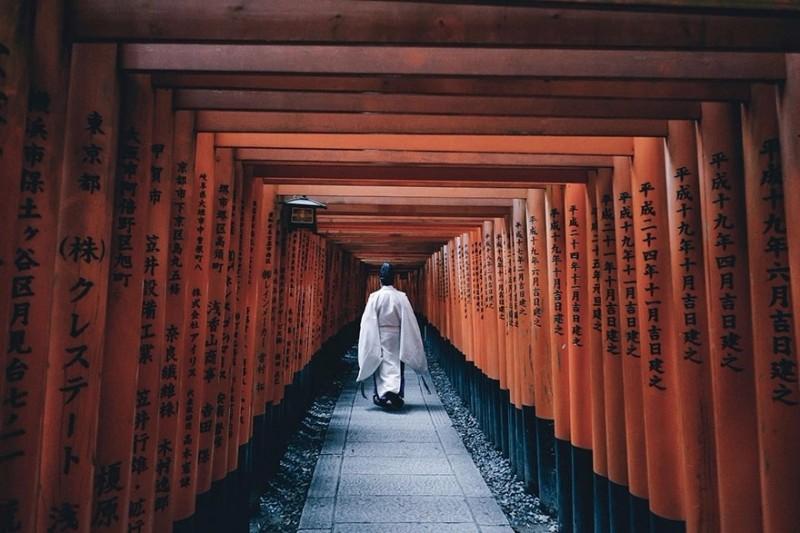 月 京都 照