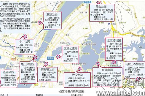 明朝时湖北地图