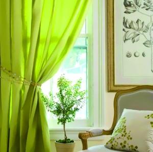 草绿色的窗帘搭配迷你盆栽