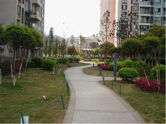 海尔海语江山 做城市花园的追梦人