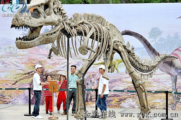 动物 恐龙 600_398