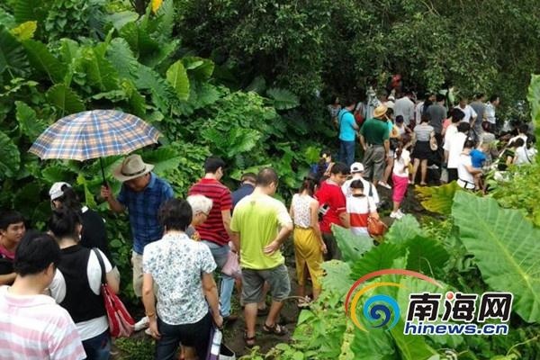 前往久温塘火山冷泉的游客络绎不绝(南海网见习记者刘莎摄)