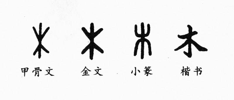 汉字书体的象形字
