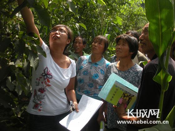 林果专家在给村民讲果树管理技术.任付珍 摄