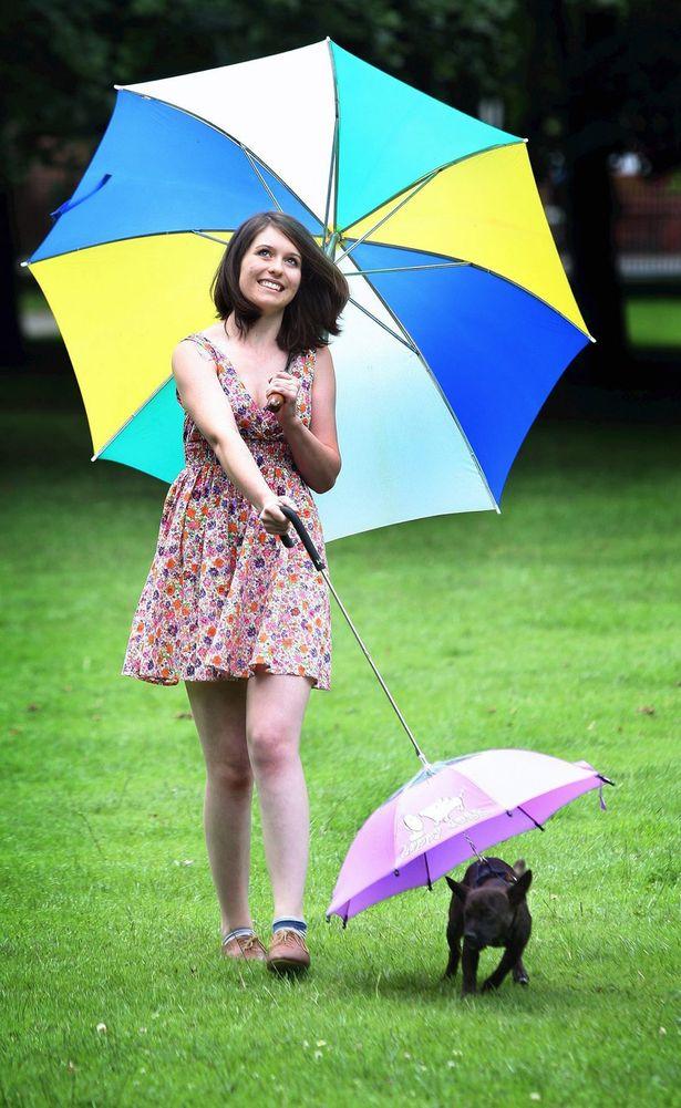 狗狗专用宠物伞在英国上市 雨天遛狗更舒心
