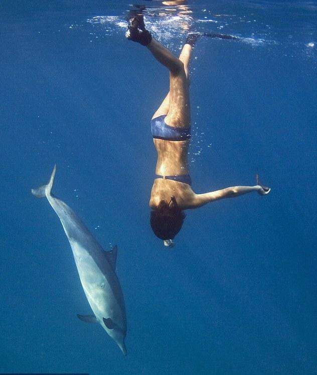 """莱娜与海豚玩""""抓树叶""""游戏"""