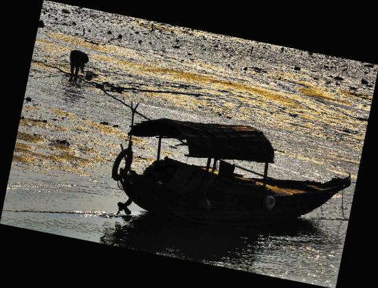湛江市区海边滩涂 高清图片