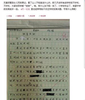 小学生足球抱怨作文午餐实在太差学校郑州小学图片