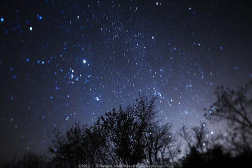流星雨夜的星空 姬航宇摄(点击图片翻页)-昨夜狮子座流星雨如约而图片