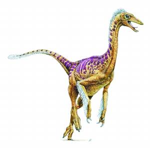 什么恐龙最厉害囹�a_世界上最早发现的恐龙化石是什么龙