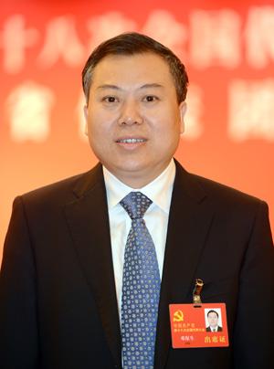 十八大代表 江西景德镇市委书记邓保生