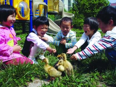 幼儿园树叶粘贴画小兔子图片大全 简单