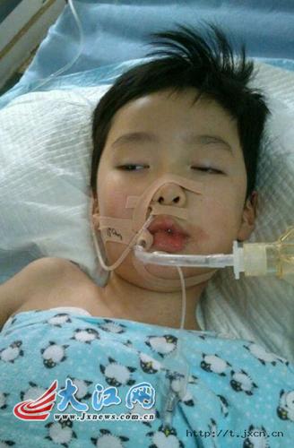 南昌一6岁小孩突发肺炎至今昏迷 母亲借本网寻