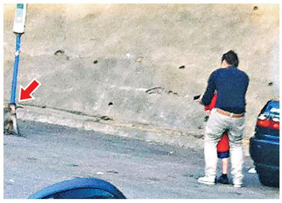 香港图纸公园内教气枪用小孩射猴一样男子重合怎么两张坐标系不图片