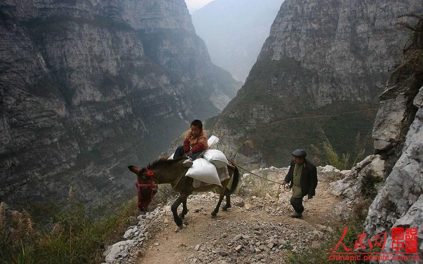四川,古路村小学的一名学生在爷爷的陪同下,骑着毛驴上学.