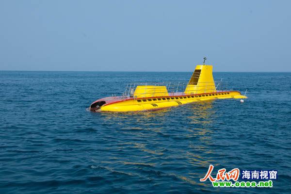 儿童六一到分界洲岛狂可免费上岛,游海豚湾