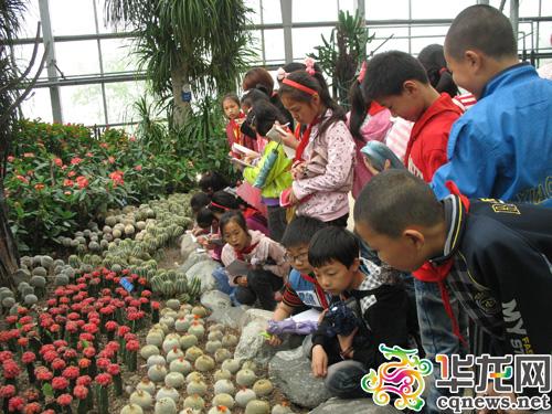 今天,重庆南山植物园科普基地迎来了南岸区迎龙小学30名留守儿童.