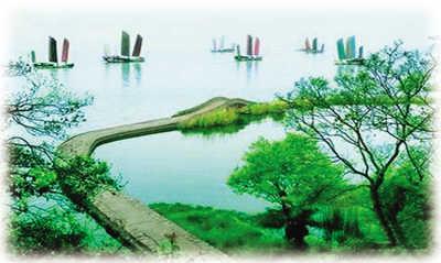 茶山上的杨梅开始绽红,枇杷树上挂满青青的果实,果树下的茶田枝繁叶茂