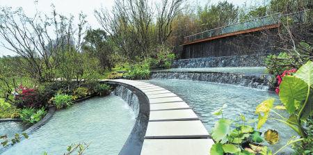 龙湖山国家森林公园生态文化建设规划初探