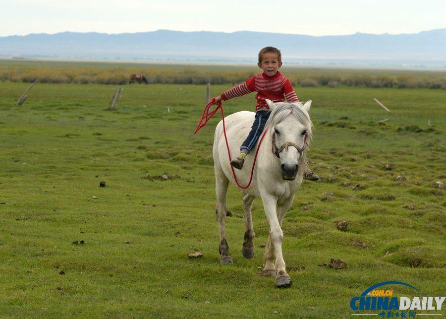 绿草如茵,蓝天白云下牛羊成群,哈萨克族牧民把家安置在草原上,骑马