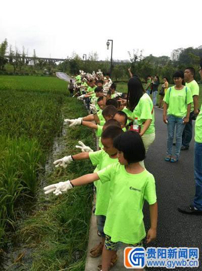 花溪百余小学生贵阳年级公园做环保毕业三字背诵v年级六小学湿地图片