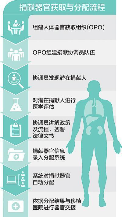卫生部门成立器官获取组织 图解捐献流程