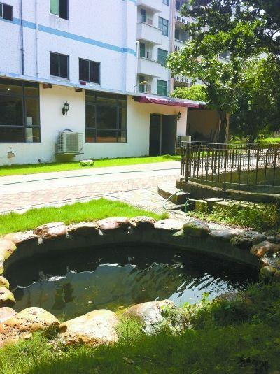 私家花园鱼池效果图