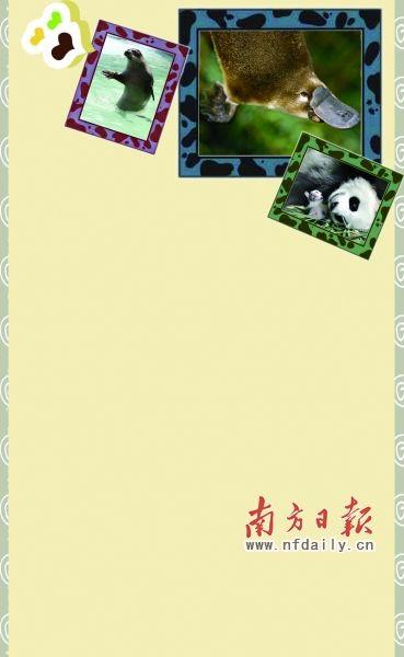 广州长隆野生动物世界的大熊猫妈妈梅清于7月31日顺利产下熊猫幼仔,这是在广东省出生的首只大熊猫,也是继北京、上海、福州、台北之后,在四川省之外的中国城市成功繁育的大熊猫宝宝。虽然大熊猫妈妈梅清的宝宝刚满月不久,但大熊猫繁育专家的介绍,预计1至2个月后,华南地区首只熊猫宝宝便可以与市民见面,相信到时必将引起一股亲近熊猫宝宝的热潮。 除了憨态可掬的熊猫宝宝惹人喜爱之外,世界各地还有许多同样可爱的动物深受小朋友的欢迎。如海龟、海马、鸭嘴兽、小绵羊、梅花鹿、海豚,甚至鲸鱼等等。很多孩子爱去动物园,看动物卡