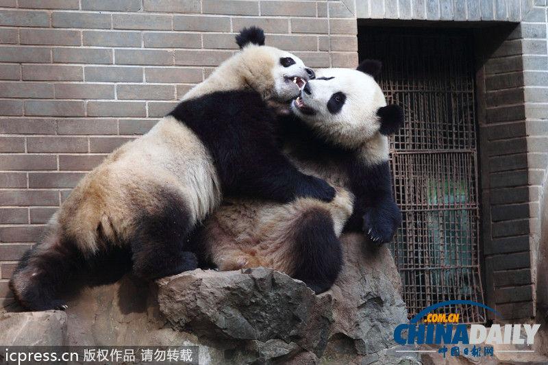 浙江杭州,杭州动物园内
