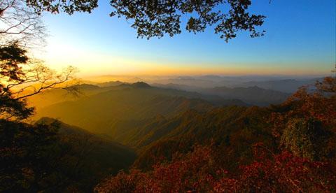 云雾山鬼谷岭国家森林公园图片