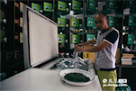 小郭从十几岁就开始卖茶,由于家人在汤湖有自己的茶园。所以他家的茶品质得以保证,最贵的茶叶要卖到1380一斤。这些茶叶还必须用冰柜保存,所以这个不起眼的冰柜里有着价值近30万的茶叶。