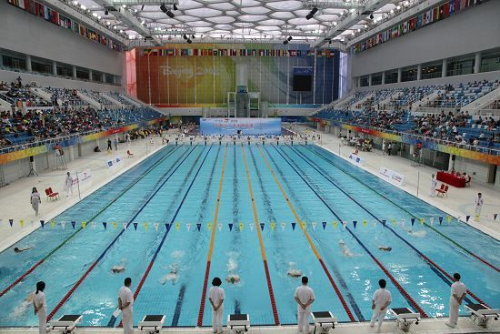 全国少儿游泳锦标赛在水立方举行 800少儿报名