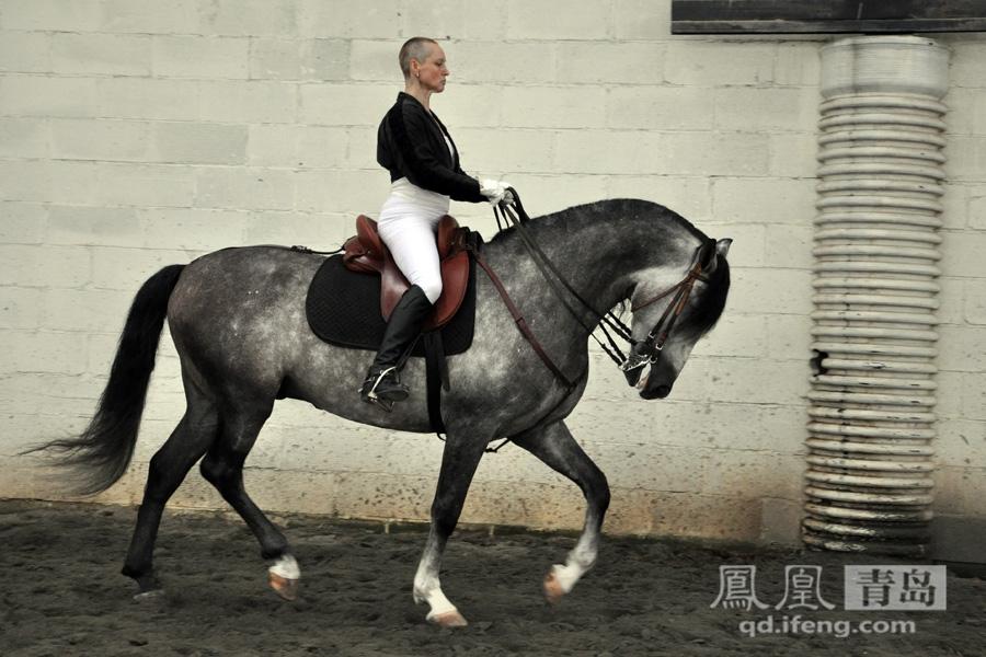 人体大胆艺术囹�a�b(:fi_2/18 白丽山是whitfielo的中文名字,她是波兰的贵族后裔,对西班牙骏马