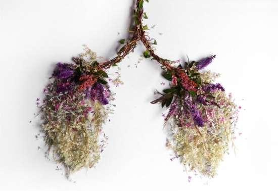 人体艺术���Y_艺术家camilacarlow发起创意无限的花样器官