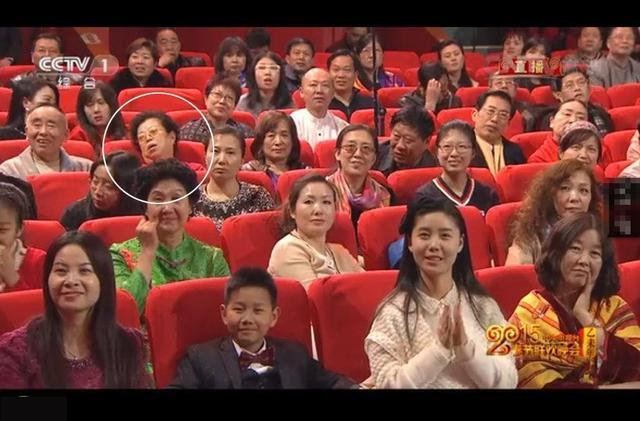 春晚观众_羊年春晚抢镜的观众_资讯频道_凤凰网