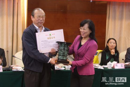 宝鸡 丁琳_宝鸡启动集善如新儿童蜜儿餐项目 副市长丁琳致辞_陕西频道_凤凰网